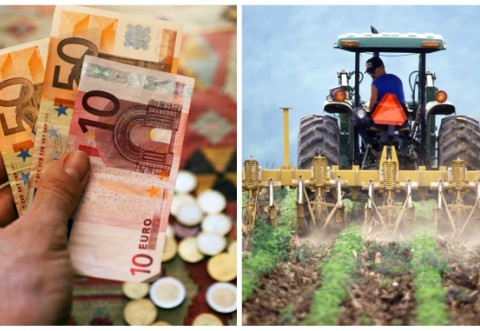 Dragnea anunță ziua când începe plata subvențiilor pentru agricultori!