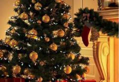 Politicienii au sărbătorit Crăciunul în stil tradiţional românesc