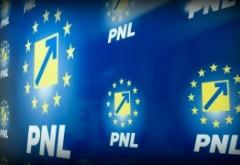 INCENDIAR Anchetă DGA la PNL - Inspectorii verifică decontări fictive făcute de partid la alegerile din 2016