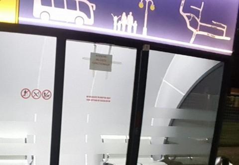 Umilințã pentru primarul Ploiestiului! Stațiile de autobuz din Brazi dau clasã cotețelor din orasul nostru
