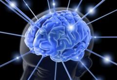 Jocurile de logică NU ajută. Ce trebuie să faci pentru a-ți menține creierul sănătos