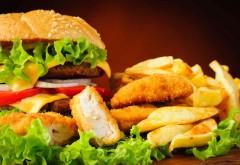 Ce chimicale contin ambalajele alimentelor de tip fast-food