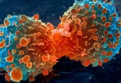 Cercetători: Emoțiile negative hrănesc celulele cancerigene