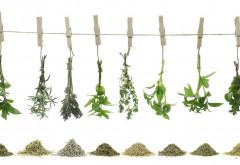 Secretele ierburilor aromatice: Cum să le folosești în funcție de mâncarea pe care o gătești