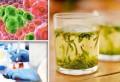 Singurul ceai care distruge celulele canceroase în 48 de ore. Uite cum se prepară
