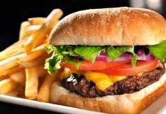 Credeai că mănânci carne, ouă sau cartofi? Ce conțin de fapt produsele din restaurantele de tip fast-food