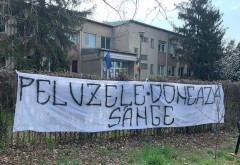 """""""Peluzele Donează Sânge"""""""