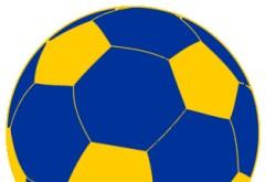 Cine o să joace în cupele europene?