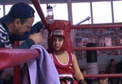 Natalitatea boxului