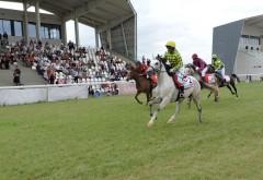 Reuniune cu număr record de cai