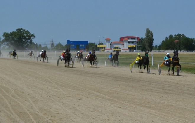 Over Jet a căștigat cursa cu cei mai mulți cai