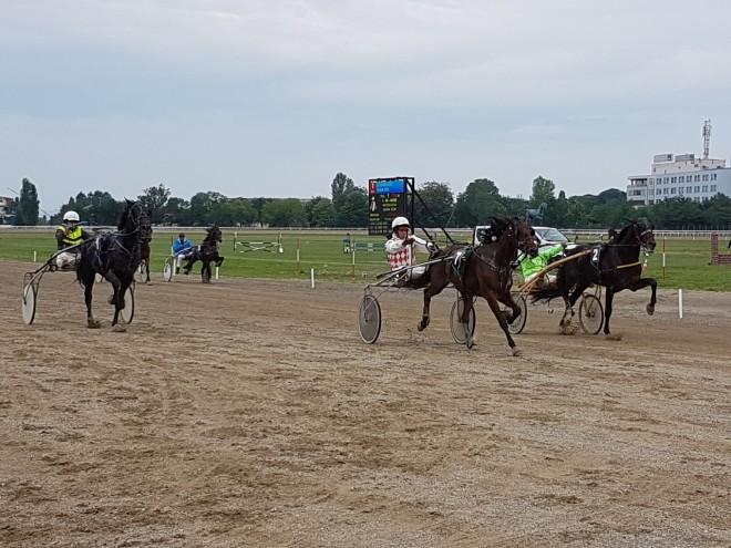 Detoxicated, prima în cursa cu 7 cai