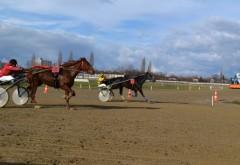 Cursa lu' șapte cai