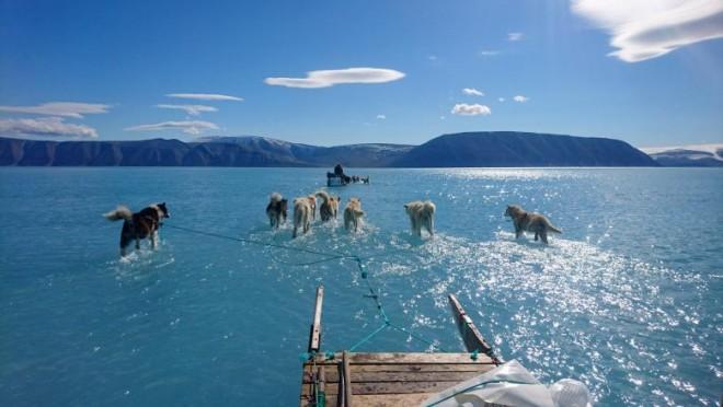 Cea mai comentata fotografie din lume, in ultimele 24 de ore. Ce se întâmplă în Groenlanda?