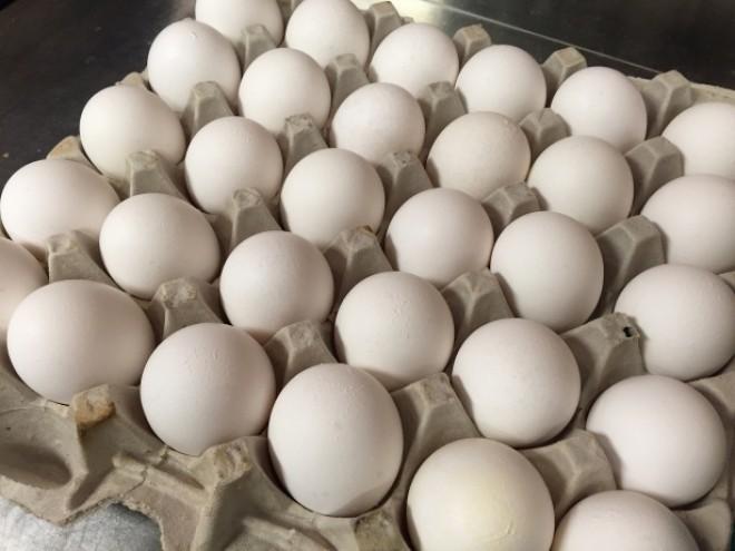 """A mâncat 42 de ouă. Ar fi trebuit 50 dar nu a mai apucat, i s-a """"tăiat""""… de tot"""