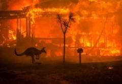 Experții anunță dezastrul - Oamenii vor trebui să se adapteze