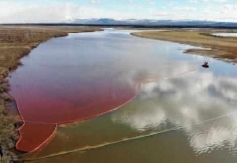 CATASTROFĂ ecologică la Cercul Artic. Vladimir Putin a declarat STAREA DE URGENȚĂ după ce zeci de mii de tone de petrol au ajuns într-un râu (VIDEO)