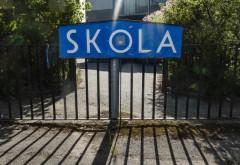 """Cum au procedat suedezii cu școlile? Profesor român: """"S-au felicitat în permanență pentru această abordare"""""""