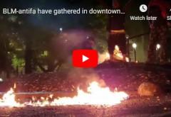 Începe ANARHIA în SUA! Manifestanţi înarmaţi cu puşti de asalt au început SĂ ARDĂ steaguri americane