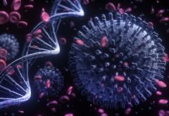 Ministru britanic: Varianta de coronavirus din Africa de Sud e mult mai îngrijorătoare decât cea din UK. Temerile oamenilor de știință