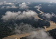 """Criză climatică. Pădurea amazoniană, considerată """"plămânul"""" Terrei, emite pentru prima dată mai mult dioxid de carbon decât consumă"""