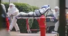 Anunţ ALARMANT. Ebola va ajunge în Europa până la sfârşitul lunii octombrie