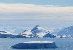 Descoperire FABULOASĂ în Antarctica