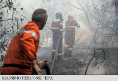 Pompieri arestați după ce aprindeau intenționat focuri pentru a primi indemnizația de intervenție