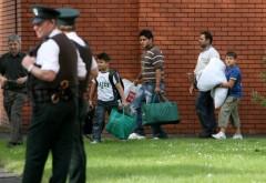 Noi reguli pentru imigranţi, după Brexit. Cum vor fi trataţi românii