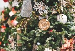 Cum arată bradul de Crăciun care valorează peste 15 milioane de dolari - VIDEO