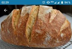 Cati lei a ajuns sa coste o paine pe site-ul de vânzări OLX