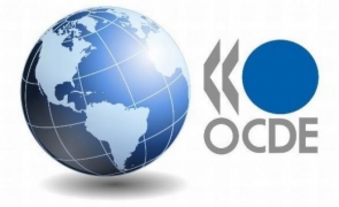 OCDE avertizează în privința întreruperii cursurilor: ce impact ar putea avea asupra economiei globale, până la sfârșitul secolului