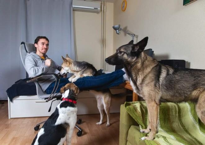 Persoanele care stau la bloc pot avea câini și pisici doar cu acordul vecinilor