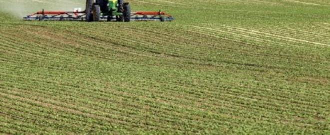 Jumătate din pământul agricol al României a fost cumpărat de străini. TOATĂ producția merge la export