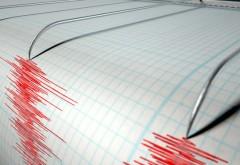 Cutremur, miercuri dimineață, în județul Vrancea