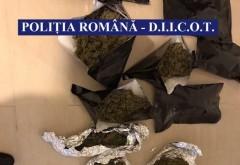 Droguri cu otravă de șobolani și spray de țânțari pe piața din România