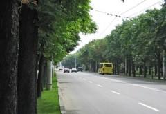 Bulevardul Castanilor va fi INCHIS circulatiei, joi, 9 mai