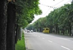 Anunt TCE: Trasee deviate de 1 iunie, din cauza inchdierii circulatiei pe Bulevardul Castanilor