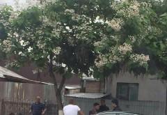 Accident RUTIER în Ploieşti. Două persoane au fost rănite