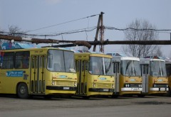 Anunţ al TCE Ploieşti cu privire la programul unor autobuze în perioada Sărbătorilor