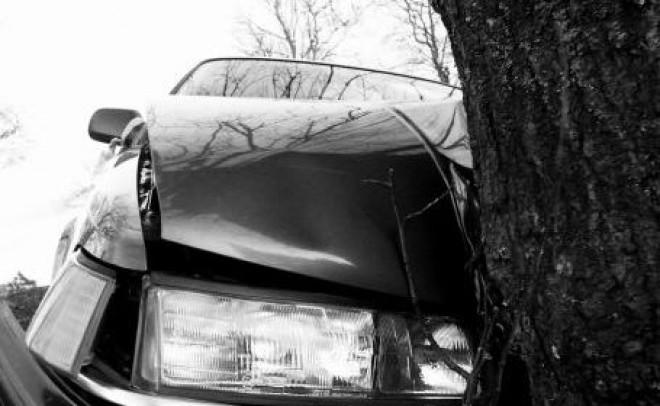 O soferita a intrat cu masina in copac, la Cocorastii Mislii