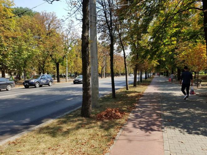 Bulevardul Castanilor, INCHIS circulatiei pana la ora 12