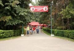 Ce faci in weekend? Parcul Bucov gazduieste Festivalul Salcamului Inflorit