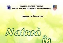 """Expozitie la Muzeul Judeţean de Ştiinţele Naturii Prahova: """"Natură în miniatură"""" poate fi vizitata pana pe 20 august"""